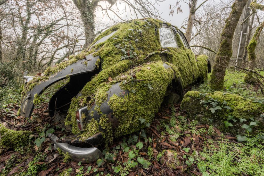 Fine art photographie Peugeot 203 Nicolas Pluquet